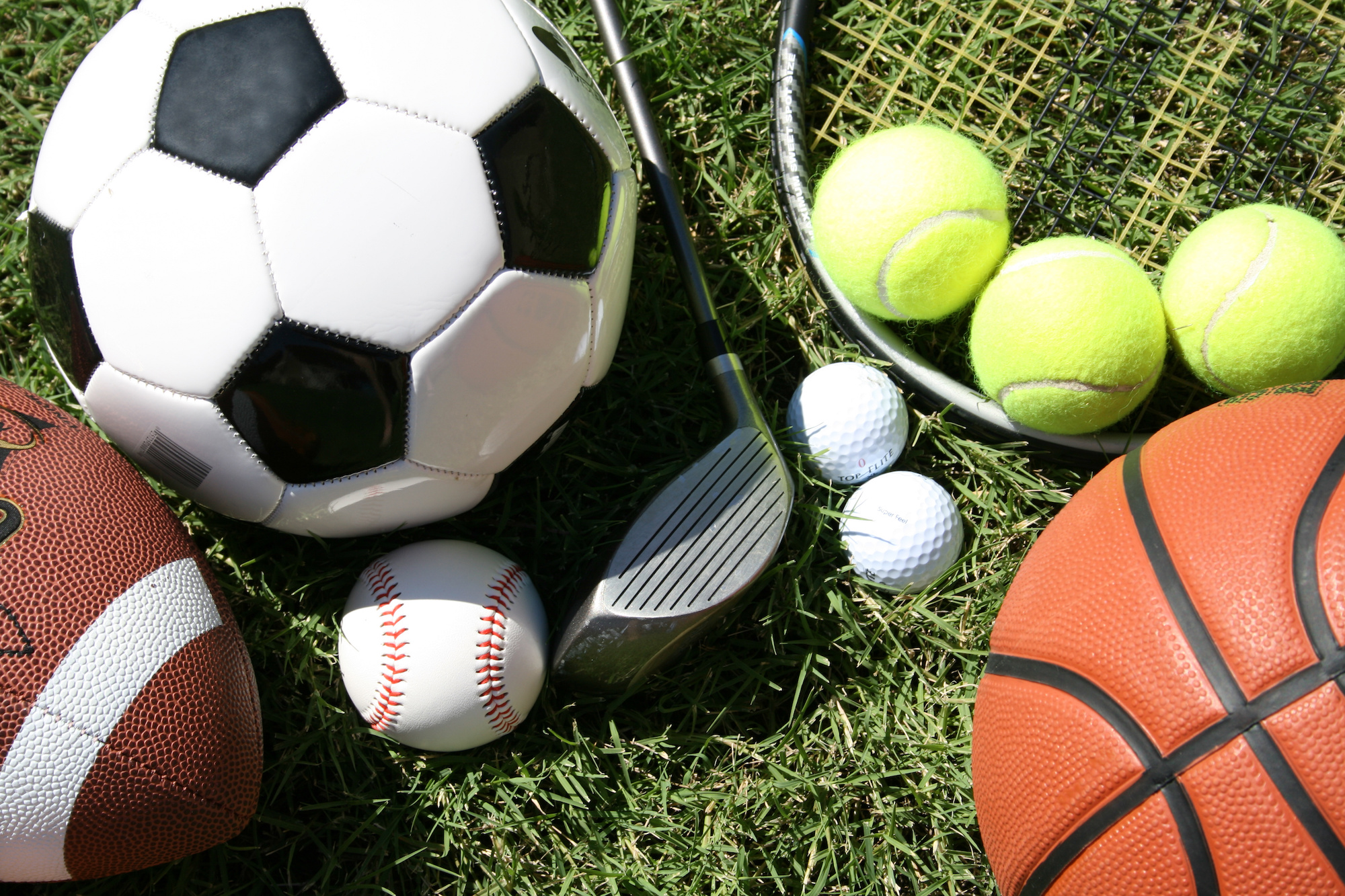 The System Categories - Sports Equipment